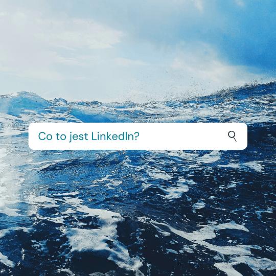 Co to jest LinkedIn – przewodnik dla początkujących.